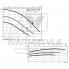 Циркуляционный насос с мокрым ротором Wilo TOP-S 50/4 DM PN6/10