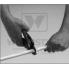 Ножницы для резки труб TECEflex пластиковые